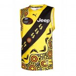 Camiseta Richmond Tigers AFL 2020-2021 Indigena
